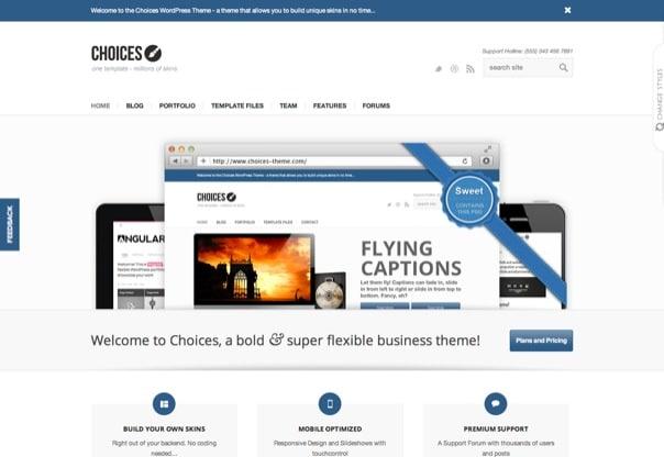 Choices - Responsive Business and Portfolio