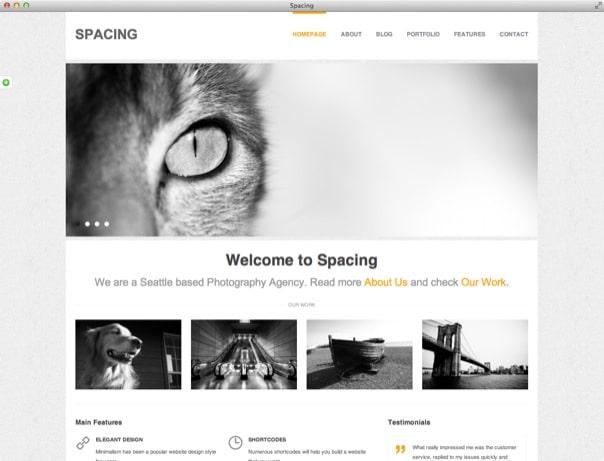 Spacing Responsive, Minimal & Bold WP Theme