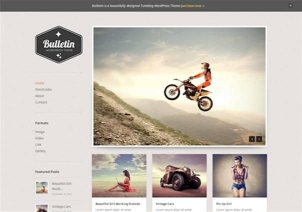 Bulletin - WordPressTheme