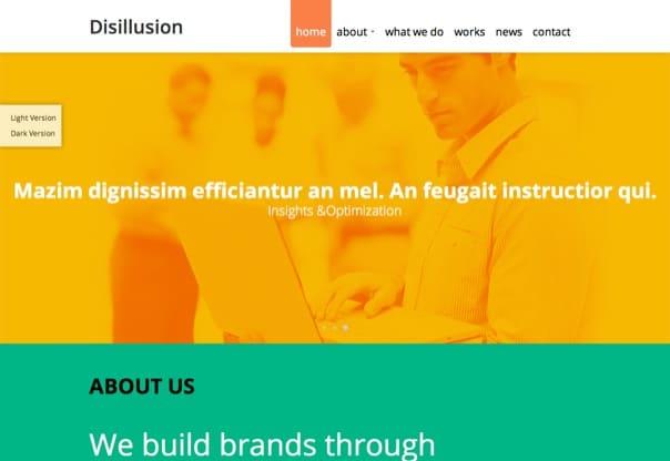 Disillusion - Responsive One Page WordPress Theme