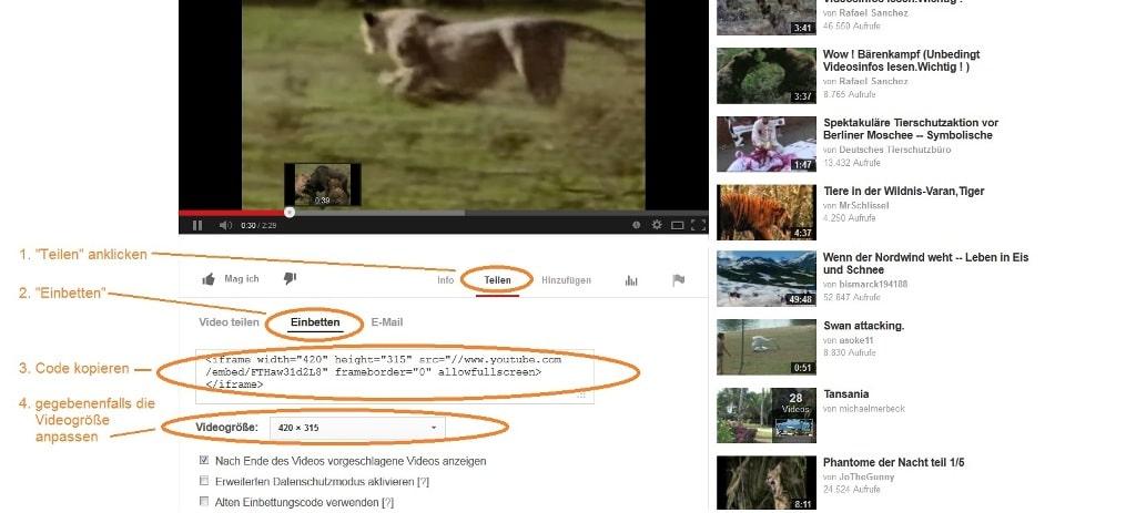 Einbettungscode von YouTube Videos finden