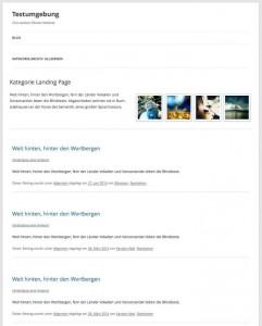 Kategorieseite in WordPress als Landing Page