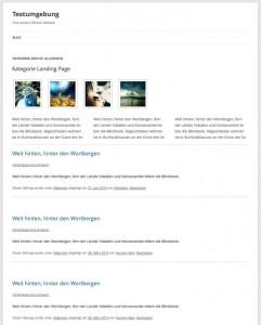 WordPress Kategorie Seite mit Beschreibung