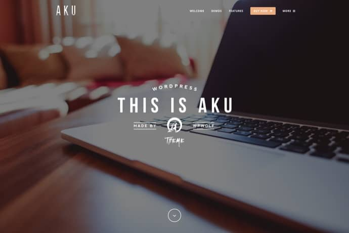 Aku - Powerful and Easy WordPress Theme