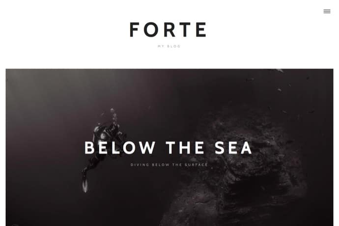 Forte - A Stylish WordPress Theme for Writers