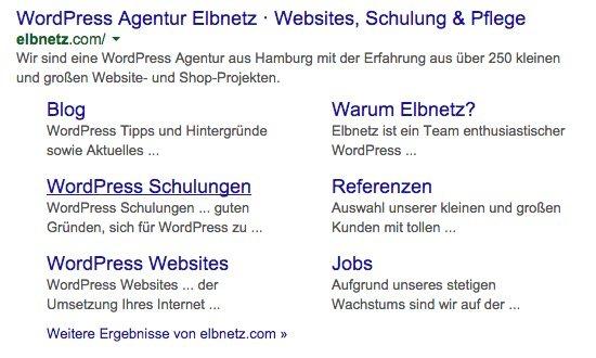 Screenshot: Elbnetz im Google Suchergebnis