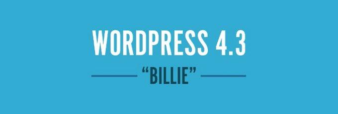 WordPress 3.4 Billie
