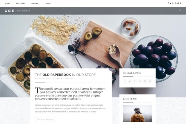 Oxie - Responsive WordPress Blog