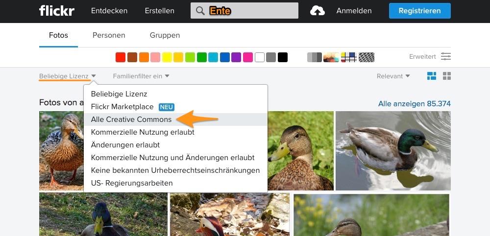 Suchergebnis der Flickr-Suche: Entenbilder
