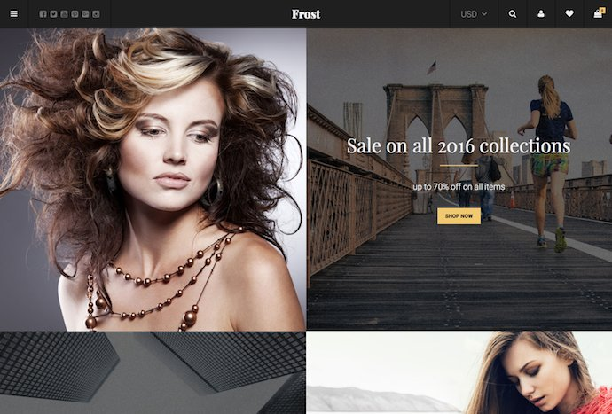 frost-minimal-ajax-woocommerce-theme