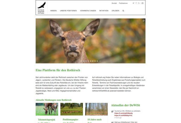 Deutsche Wildtier Stiftung: Rothirsch.org