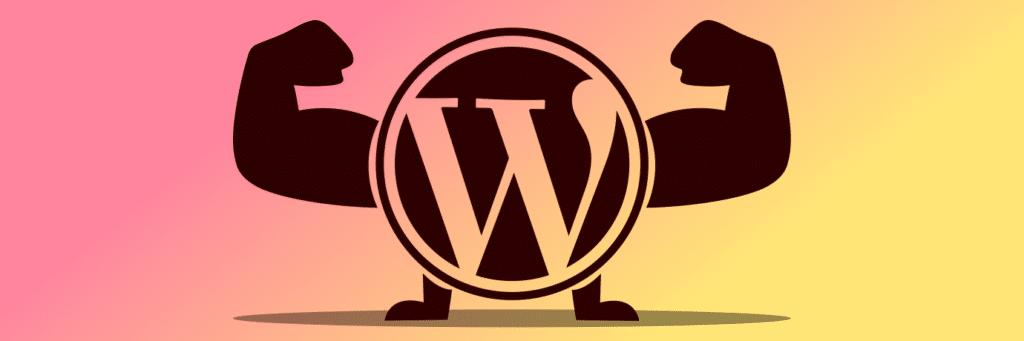 Plugins für WordPress auswählen