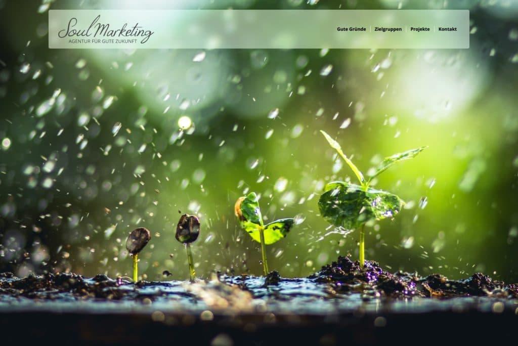 Soulmarketing - Startseite