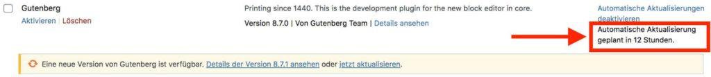 Hinweis auf die nächste automatische Aktualisierung eines WordPress-Plugins